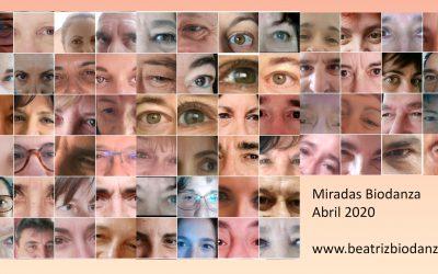 Reto: #miradasbiodanzadesdecasa
